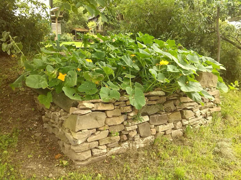 Bruchsteinmauer als Kürbisbeet