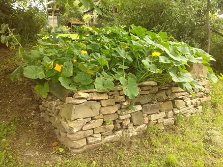 Bruchsteinmauerwerk als Kürbisbeet